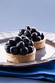 Two blueberry tartlets