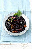 A bowl of blackberries