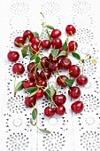 Sour cherries with leaves on a lace surface