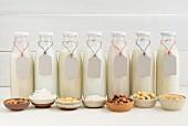 Mandel-, Kokos-, Soja-, Reis-, Haselnuss-, Cashew- & Haferdrink