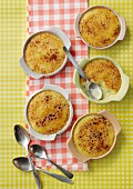 Crema Catalana in dishes