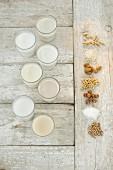 Verschiedene laktosefreie Milchalternativen in Gläsern (Aufsicht)