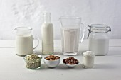 Various types of vegan milk with ingredients