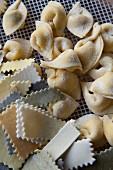 Handmade pasta on a drying rack
