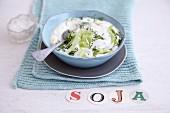 Vegan tzatziki made from soya yoghurt, cucumber and dill