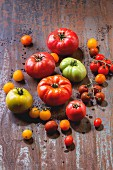 Various types of tomatoes on a metal surface