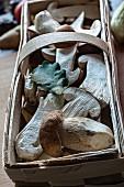 Fresh porcini mushrooms in a wooden basket