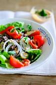 Fresh beef salad
