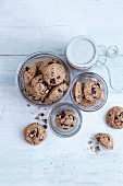 Gluten-free cookies made with yoghurt, apples and dark chocolate