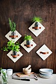 Wall brackets for screw jars with kitchen herbs