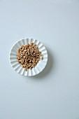 A dish of unripe spelt grains
