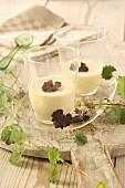 Chocolate-covered ground ivy in white chocolate cream