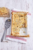 Quick chicory quiche made with ready-made puff pastry
