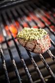 Tuna fish on a barbecue