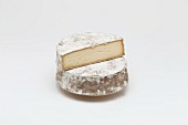 Tome des Bauges (cheese from Savoy, France)
