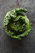 Savoy cabbage (seen from above)