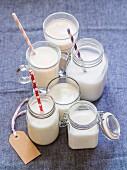 Verschiedene Sorten laktosefreie Milchersatz