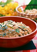 Sansai Gohan (vegetable mountain rice, Japan)