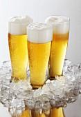 Drei Gläser Bier mit Schaumkronen inmitten von Crushed Ice