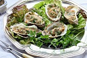 Grilled oysters with herbs on a silver tray