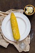 A cooked corn cob on a white plate with knobs of butter