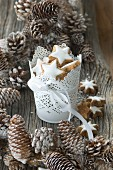 Cinnamon star biscuits in a white metal container surrounded by snow-dusted pine cones