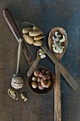 Walnuts, hazelnuts, cashew nuts, peanuts and almonds on wooden spoons