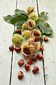 Chestnuts on a rustic wooden table