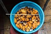 Washed weevil larvae for grilled skewers (Ecuador)
