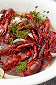 Cooked crayfish with dill