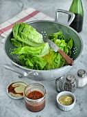 Lettuce in a colander with salad dressing, mustard, salt and pepper next to it