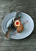 A Scotch egg, halved, on a plate
