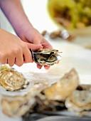 Frau beim Öffnen einer frischen Auster