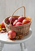 Äpfel im Korb mit Herbstlaub