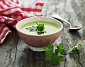 Herb soup with parsley