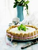 Sponge finger cake for Valentine's Day