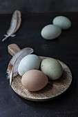 Various different coloured organic eggs with feathers