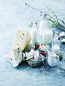 Bottles of milk, quark cream, cream and cheese