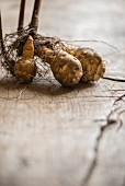 Jerusalem artichokes with roots