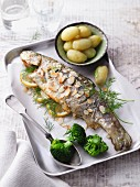 Fries trout with flaked almonds, dill and new potatoes