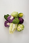 Assorted cabbages