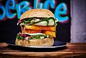 A halloumi and cucumber burger