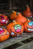 Painted Halloween pumpkins on a farm