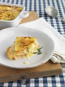 Lasagne with salmon and fennel