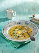 Cream of potato soup with nutmeg