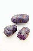 Lila Kartoffeln auf weißem Untergrund