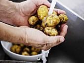 Person wäscht Kartoffeln unter fliessendem Wasser in Küchenspüle