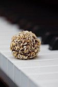 A coconut truffle praline on the keys of a piano