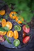Aufgeschnittene Tomaten auf Metallteller im Garten