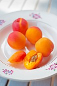 A plate of fresh apricots